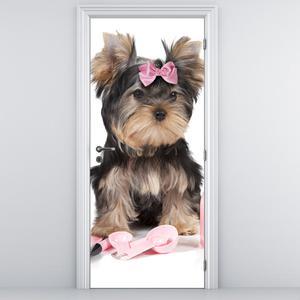 Fotótapéta ajtóra - kis kutya (D014860D95205)