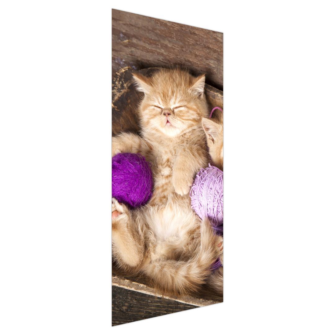 Fototapeta na dvere - mačiatko s fialovými klbkami (D014996D95205)