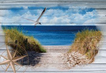Fotótapéta - Sirály a tengerparton - imitált tábla (T030047T368280A)