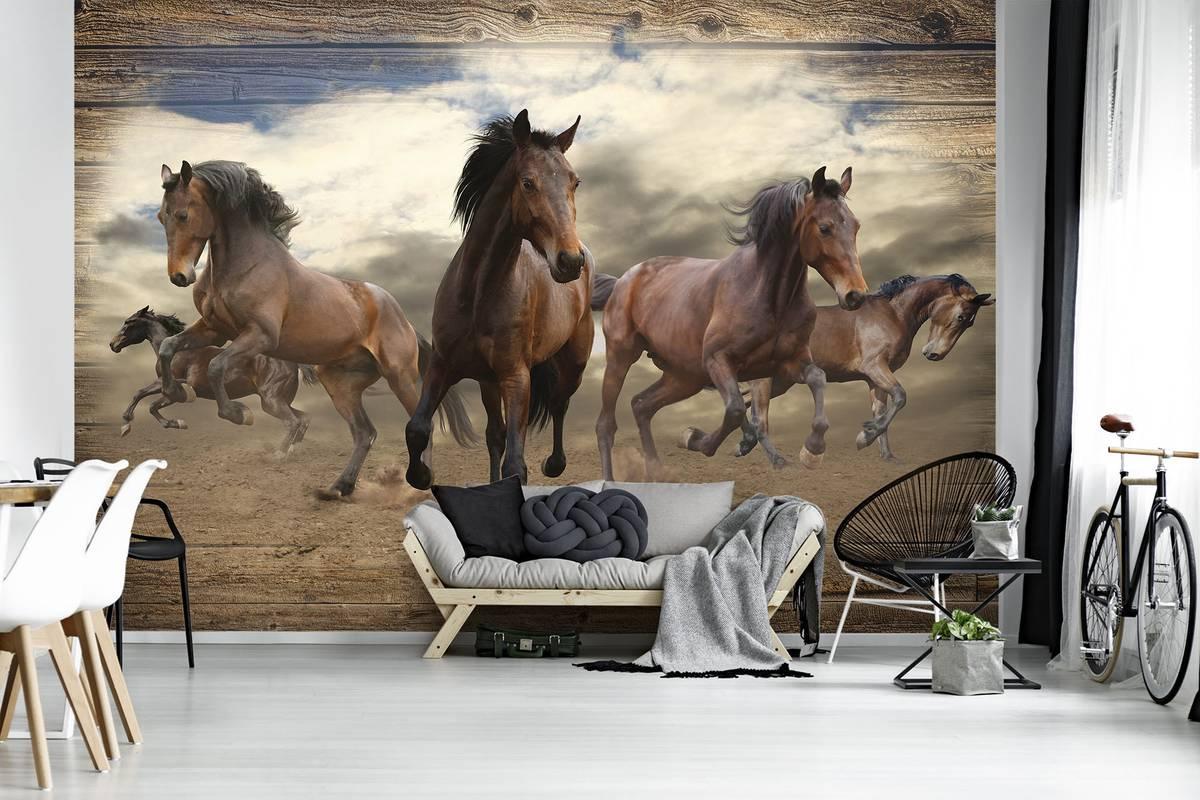 Fototapeta - Cval koně na dřevěných prken (T030089T254184A)