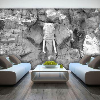 Foto tapeta - Slon, vklesan v skale - siv (T030112T368280A)
