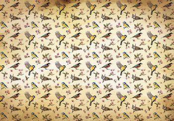 Fototapeta - Ptáčci a květinový vzor (T030296T184254A)