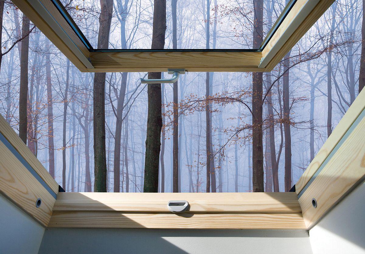 Fototapeta - Pohled z okna na mlhavé lesy (T030306T254184B)