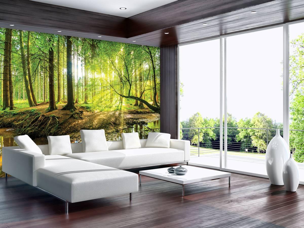 Foto tapeta - Sunčana šuma (T030361T254184B)