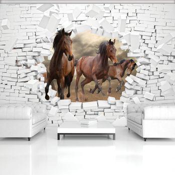 Fototapeta - 3D koně ve zdi (T030388T254184B)