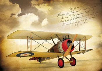 Fototapeta - Vintage letadlo (T030389T254184A)