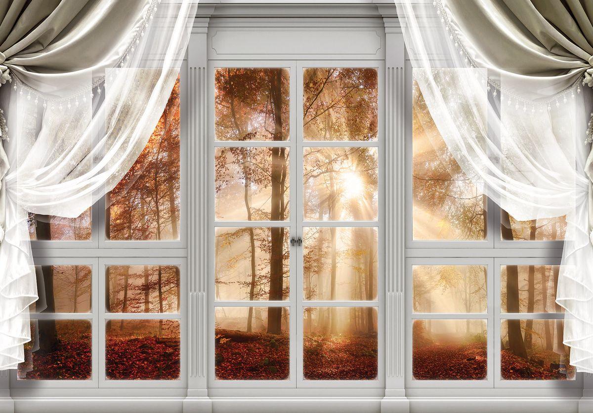Fototapet - privire din geam spre pădure (T030401T1525104B)