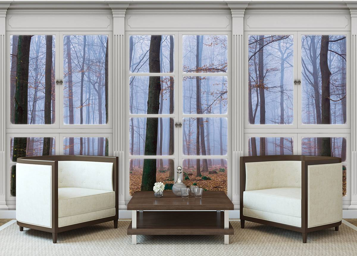 Fototapeta - Výhled z okna zahalený v mlze (T030427T254184B)