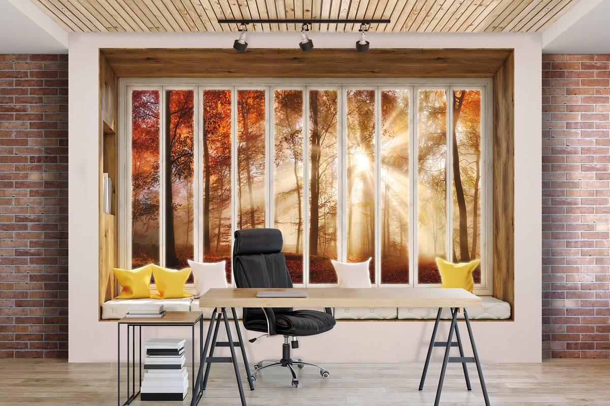 Fototapeta - Podzimní výhled z okna lesa (T030439T1525104B)