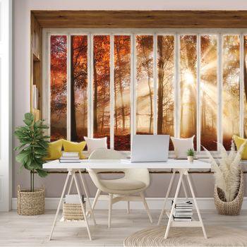 Fototapeta - Podzimní výhled z okna lesa (T030439T368280A)