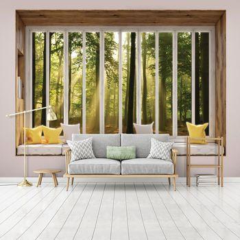 Fototapeta - Výhled z okna na les (T030444T368280A)