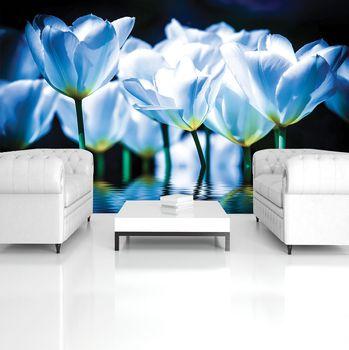 Fototapeta - Květiny - modrý nádech (T030699T254184A)