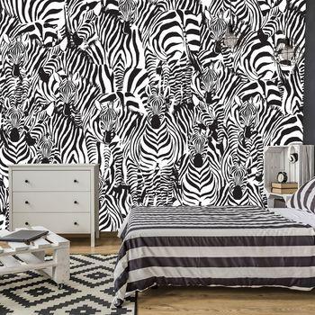 Fototapet - Zebra (T030702T368280A)