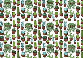 Fototapet - Cactus (T030734T368280A)