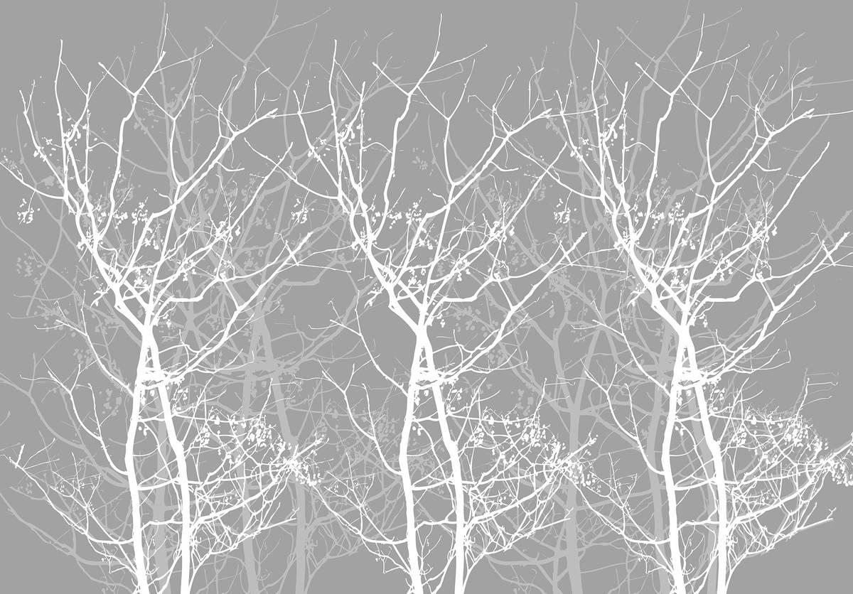 Fototapet - Conturul copacului (T030935T1525104B)