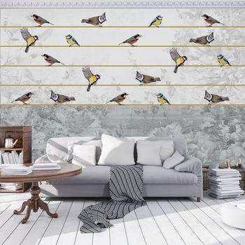 Fototapeta - Ptáci na zlatém provázku (T031213T368280A)