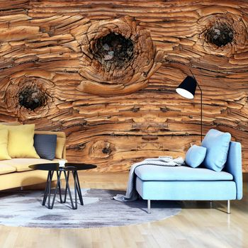 Fototapeta - Detail dřevo (T031216T368280A)
