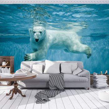 Foto tapeta - Polarni medvjed (T031440T254184A)