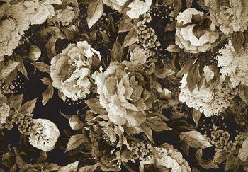 Fotótapéta - Bazsarózsa virágok (T031913T368280A)