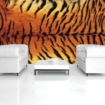 Fototapeta - Tygří vzor (T032558T254184A)