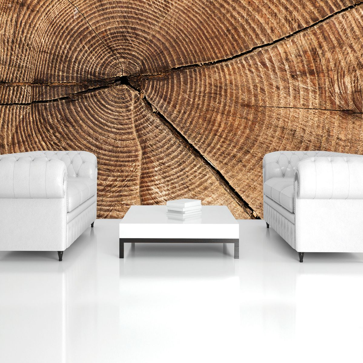 Fototapet - Secțiunea prin trunchiul de copac (T032705T1525104B)