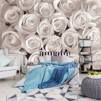 Foto tapeta - Bele vrtnice (T032871T254184B)