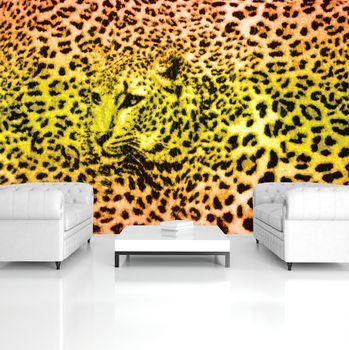 Fototapeta - Gepard leopardí zvíře (T033565T254184A)