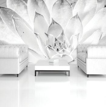 Foto tapeta - cvijet lotosa (T033672T254184A)