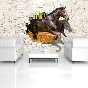 Foto tapeta - Konj je iskočio iz zida - 3D (T033692T254184A)