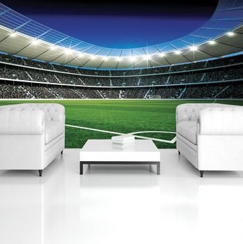 Fototapet - Stadion de fodbal (T033773T254184A)