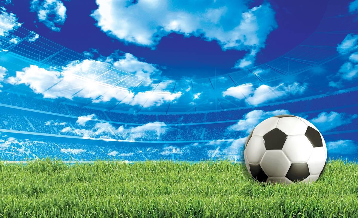 Fototapet - Fodbal pe iarbă (T033919T1525104B)