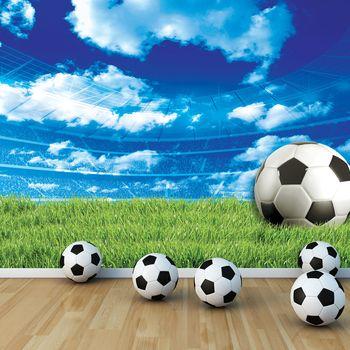 Fototapet - Fodbal pe iarbă (T033919T254184A)