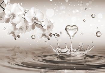 Foto tapeta - Srce na vodi (T033994T254184A)