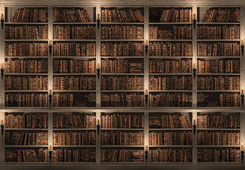 Fototapeta - Knižnica plná kníh (T034170T254184A)
