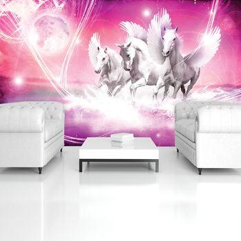 Fototapeta - Pegasus na růžovém pozadí (T034429T254184A)