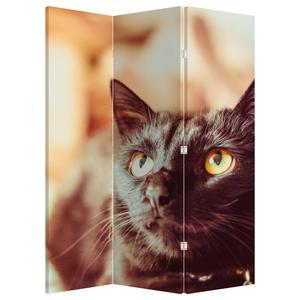Paraván - Černá kočka (P020410P135180)