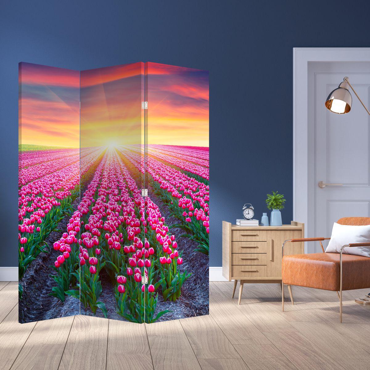 Paraván - Tulipán mező és a nap (P020554P135180)