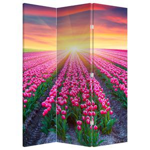 Paraván - Pole tulipánov so slnkom (P020554P135180)