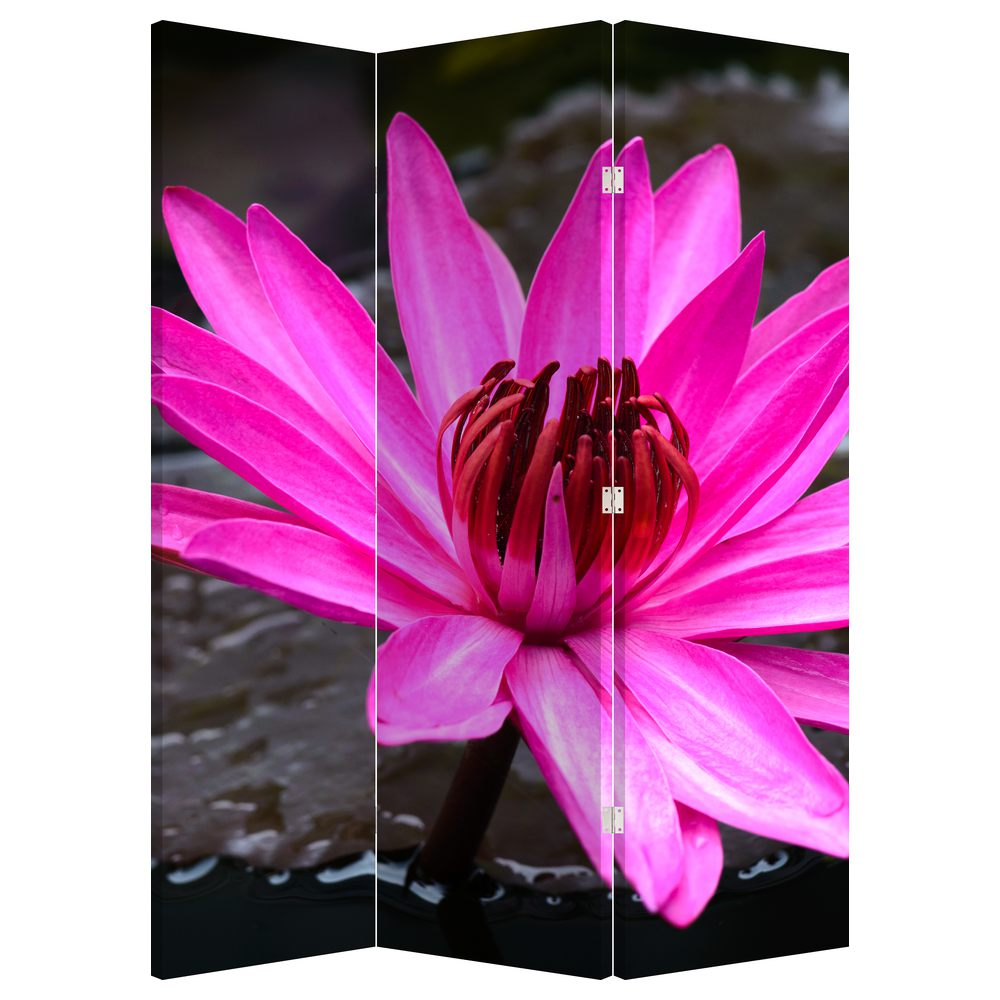 Paraván - Ružový kvet (P020636P135180)