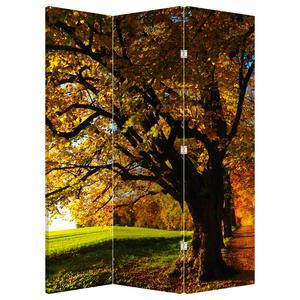 Paraván - Podzimní strom (P020838P135180)