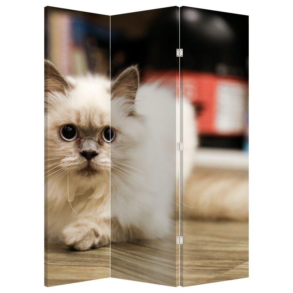 Paraván - Bílá kočka (P021124P135180)