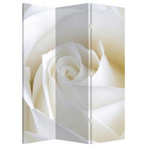 Paraván - Bílá růže (P021208P135180)