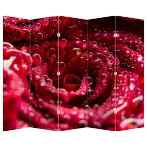 Paraván - Květ červené růže (P020009P225180)