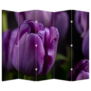 Paraván - Květ tulipánů (P020215P225180)
