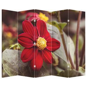 Paraván - Květina (P020279P225180)