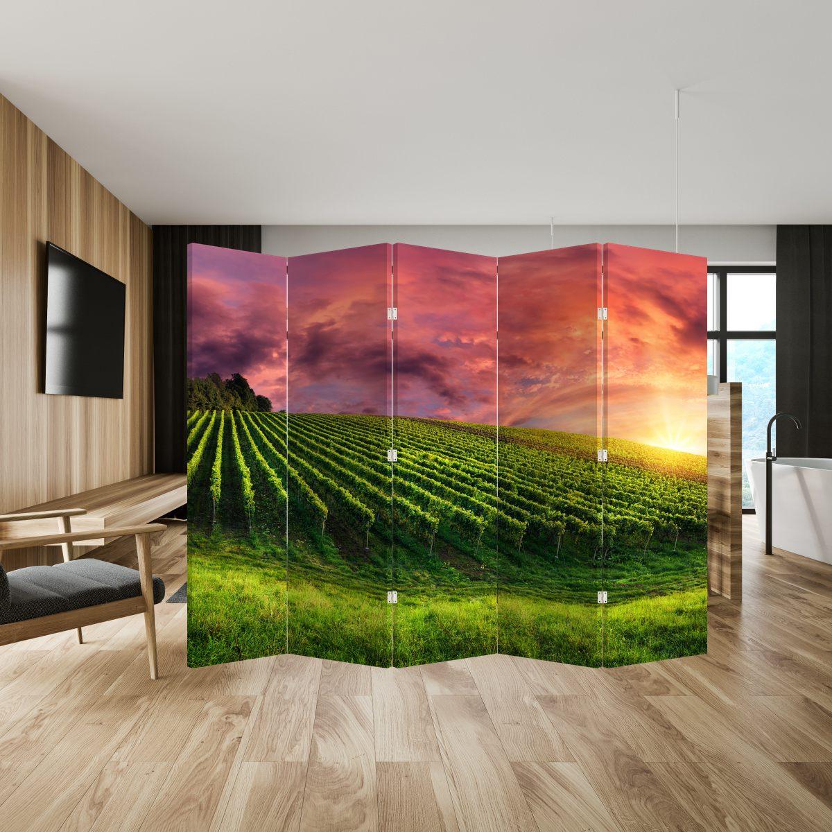 Paraván - Vinohrad s barevným nebem (P020336P225180)