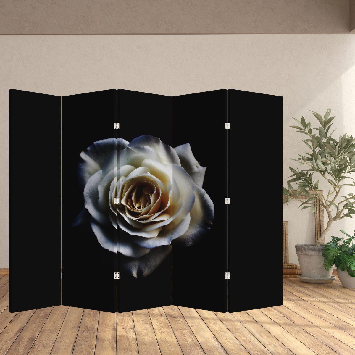 Paraván - Bílá růže (P020370P225180)