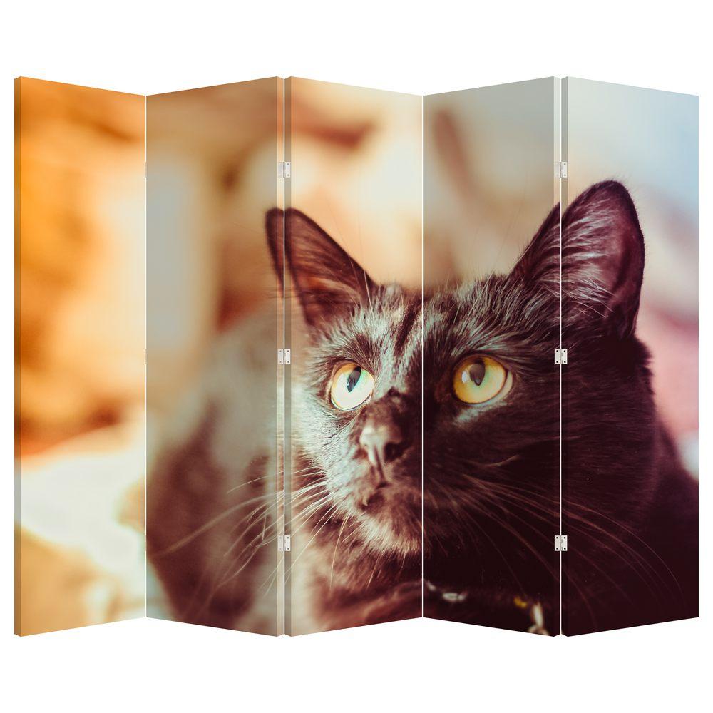 Paraván - Černá kočka (P020410P225180)