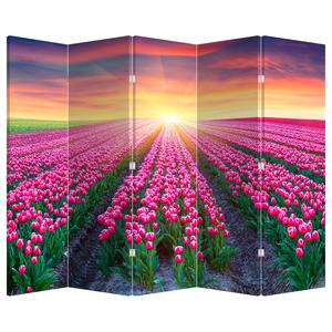 Paraván - Pole tulipánů se sluncem (P020554P225180)