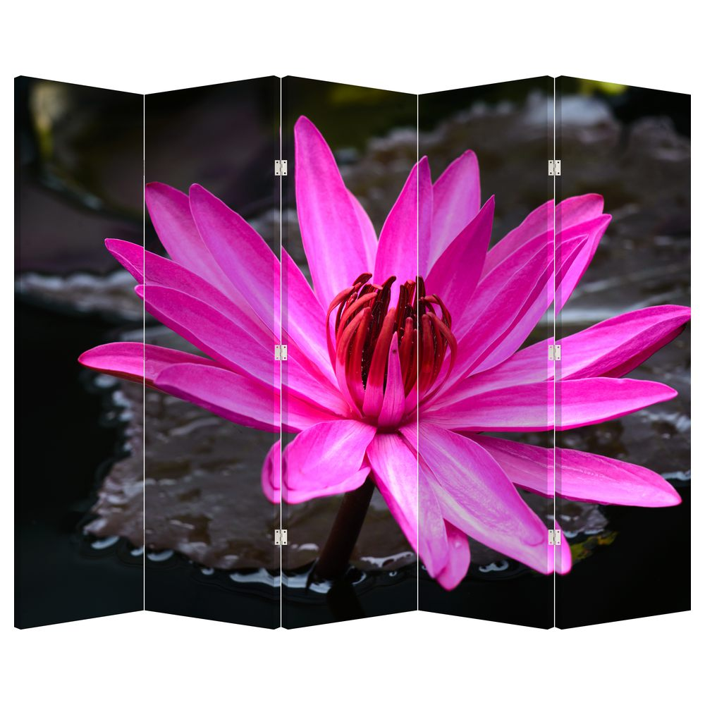 Paraván - Růžový květ (P020636P225180)